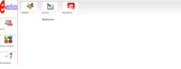 Professional Web Application Development