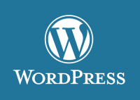 Website or Blog with Wordpress